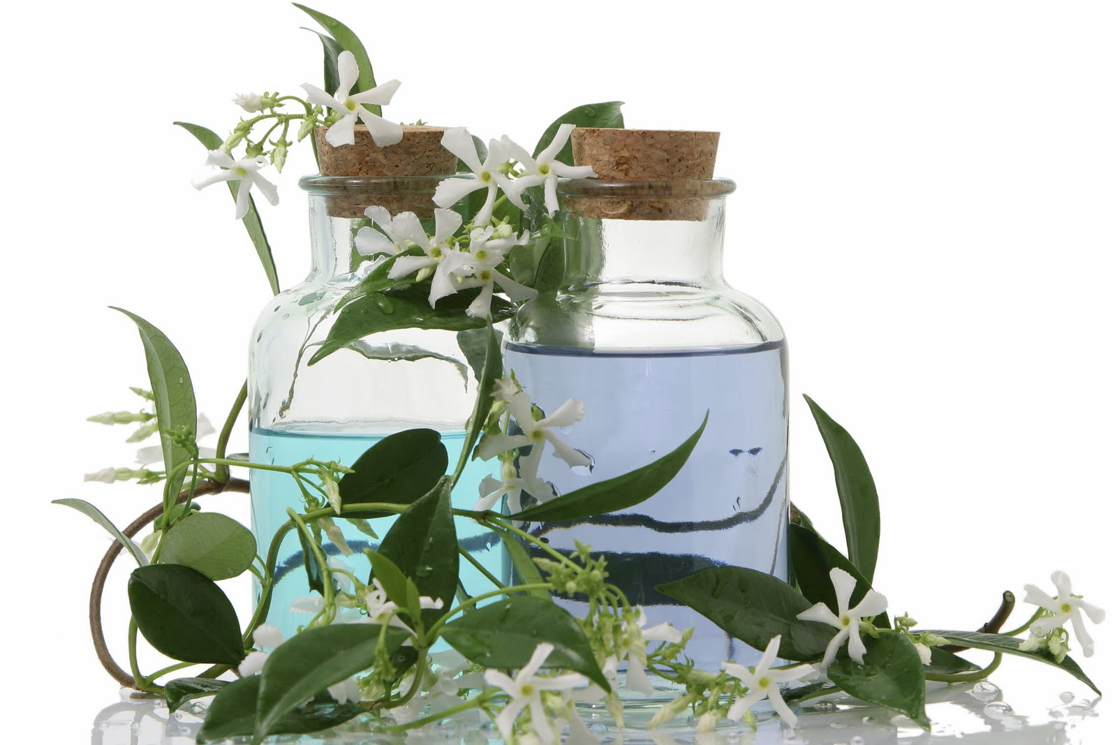 Jasmine Hair Oil Manufacturer in India