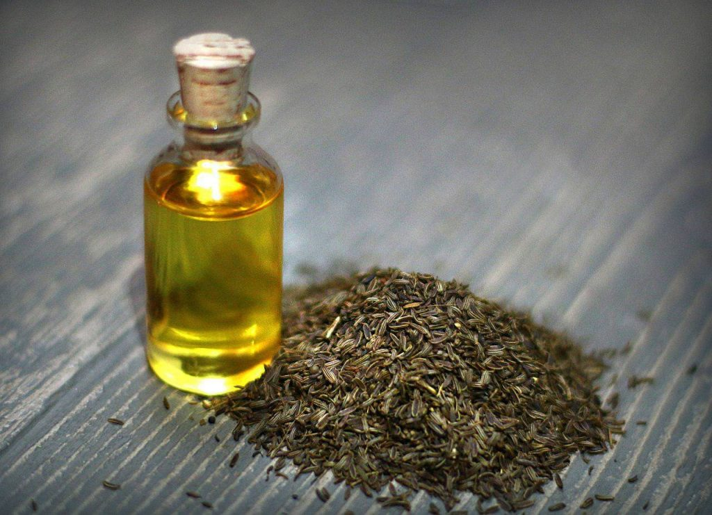 Caraway Oil Manufacturer in India